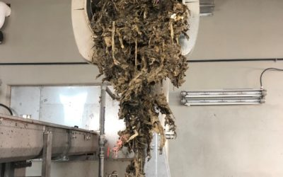 COVID-19 and Sewers – To avoid a Sewage Back-up don't treat your toilet like trash can