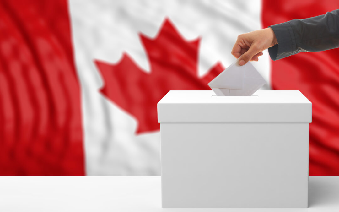 Water Haller: All's Quiet on the Election Front